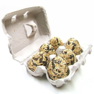 Birdseed Nest Eggs - Pack of 6 Eggs